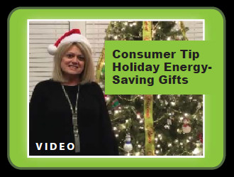 Holiday Energy Saving Gifts