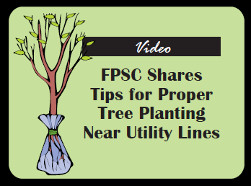Planting Near Utility Lines