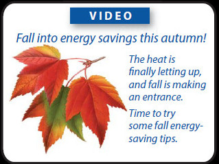 Fall into Energy Savings this Autumn